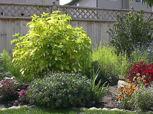 Get Those Yard & Garden Projects on the Go!