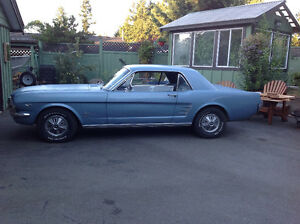 1966 mustang coupe reduced price