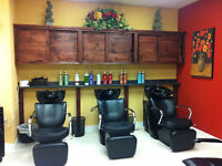 Experienced Licensed Hair Stylists