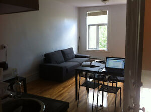 Wonderfull and sunny appartment (Laurier/Chambord)