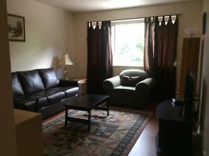 SHORT TERM rental of furnished apartment