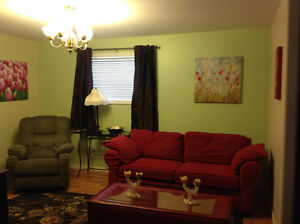 TWO BEDROOM BASEMENT APT GOULDS