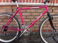 Ladies 12 Speed mountain bike