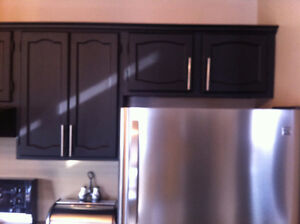 PAINTING PLUS KITCHEN CABINET ! ! ! Windsor Region Ontario image 3
