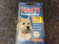 Small dog halti brand new