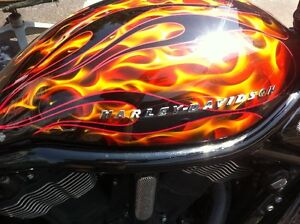 Rare HD Custom Paint Vrod Breather Cover