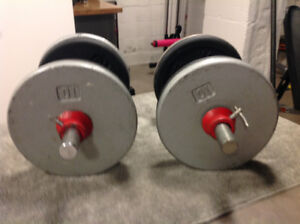 Neutral bar and dumbells for sale