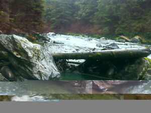 Placer Claim on Lardeau Creek in Trout Lake Revelstoke British Columbia image 4