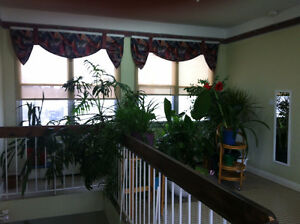 Students, furnished rooms available 4 rent. Everything included Gatineau Ottawa / Gatineau Area image 5