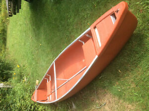 Canoe and electric motor reduced now $450