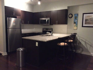 Furnished Downtown 2 Bed 2 Bath in Luxurious Icon 2 Condo