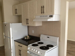 2 BDR BEST CENTRAL LOCATION ELEVATOR MAY ONLY 1/2 RENT