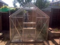 Greenhouse in Excellent Condition
