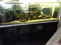 6f t heavy duty fish tank with filtration and rock