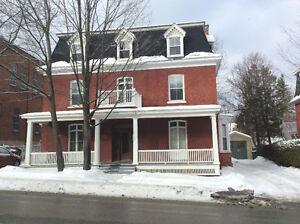 Vieux nord ,centre ville,de montreal,Jacques Cartier.