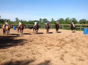 equestrian day camp