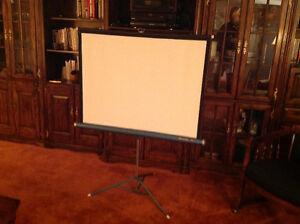 Portable projector screen London Ontario image 1