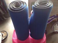 2 foam padded exercise mats