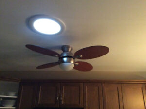 Ceiling fan with light and remote.  Walnut coloured, petal shape