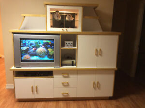 Wall unit and TV For Sale