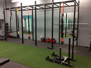 Personal Training Spots Now Available - Burlington Oakville / Halton Region Toronto (GTA) image 4