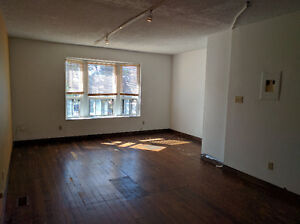 2 bedroom apartment in Parkdale with charm