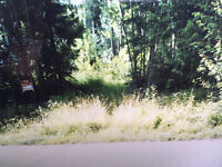 Shuswap Lot for Sale, great deal or make an offer