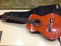 Valencia 1/2 size guitar + case