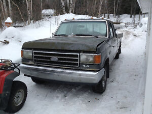 1989 Ford F-150 Camionnette