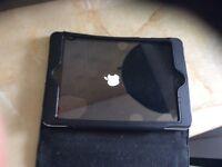 Apple mini iPad 16gb