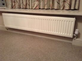 New white radiator- double panel- same as the one pictured here. I need space thus reduced.
