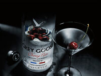 LOOKING FOR MODELS FOR GREY GOOSE - 19-28 YRS OLD