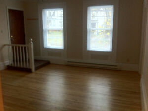 132 DOUGLAS AVE- 2 BEDROOM HEAT,LIGHTS & HOT WATER INCLUD $795/M