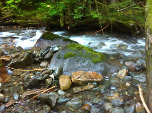big placer claim on yeoward creek by cherryville bc
