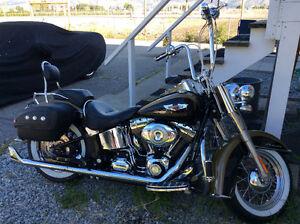 Harley Davidson Softail Delux