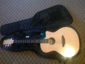 Acoustic guitar with soft travel case