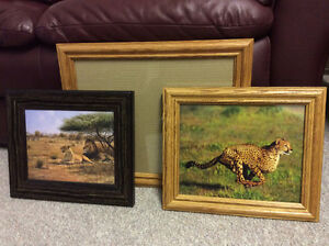 Cheetah, Lion and Blank Frames