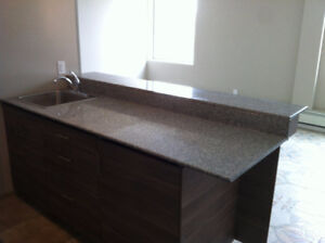Downtown/MacEwan Arena district new 1 bed and den apartment for