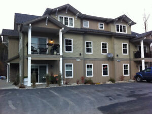 Executive condo available near Whitewater Ski for Feb 2018