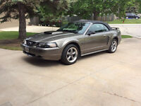 2002 Ford Mustang Supercharged gt Convertible