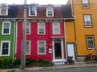 Two bedroom furnished apartment in historic St. John's
