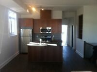 Beautiful 1 bedroom well located in Orleans-NEW