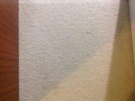 Cream carpet and underlay for sale