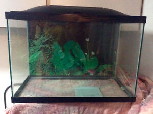 27 Gallon Fish Tank