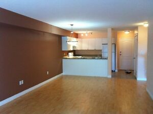 SPACIOUS ONE BEDROOM CONDO ALBERTA SIDE