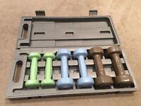 Reebok 6kg handweight set