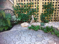 Garden design. consultation. garden planting/pruning. clean up