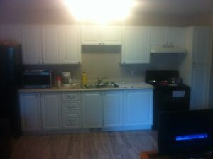 newly updated 1 bedroom APT