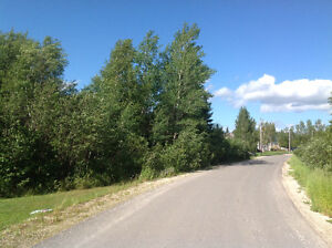 19 Elm street reidsvile  near deer lake