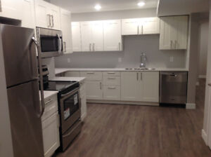 For Rent-Brand New Basement Suite